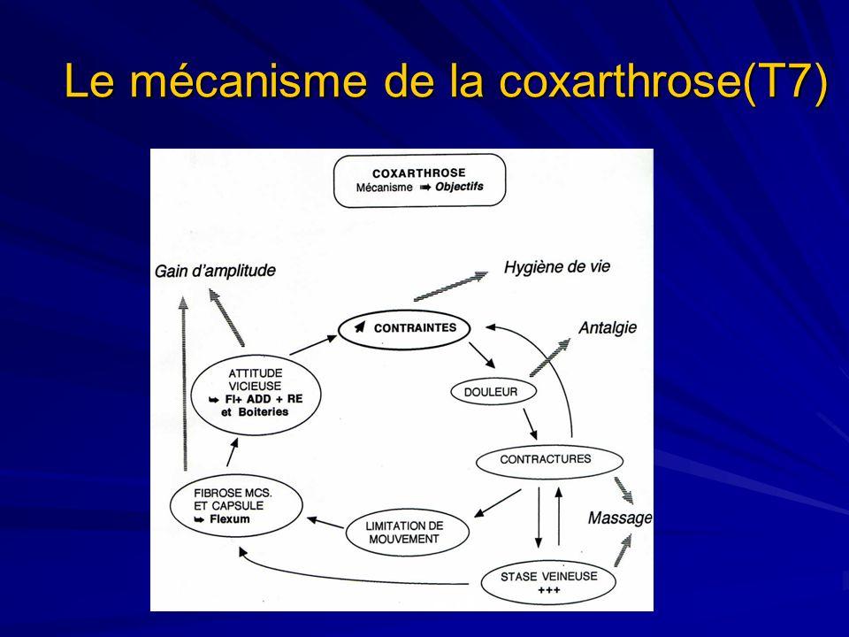 Le mécanisme de la coxarthrose(T7)