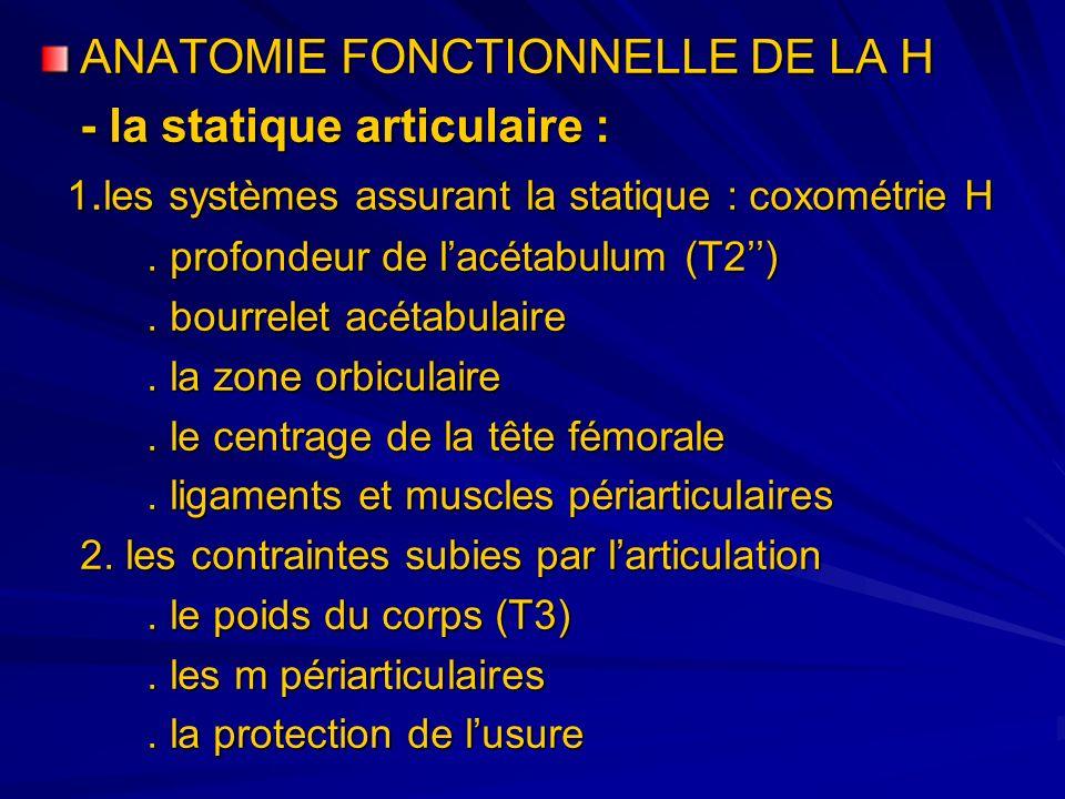 ANATOMIE FONCTIONNELLE DE LA H - la statique articulaire : 1. les systèmes assurant la statique : coxométrie H 1. les systèmes assurant la statique :