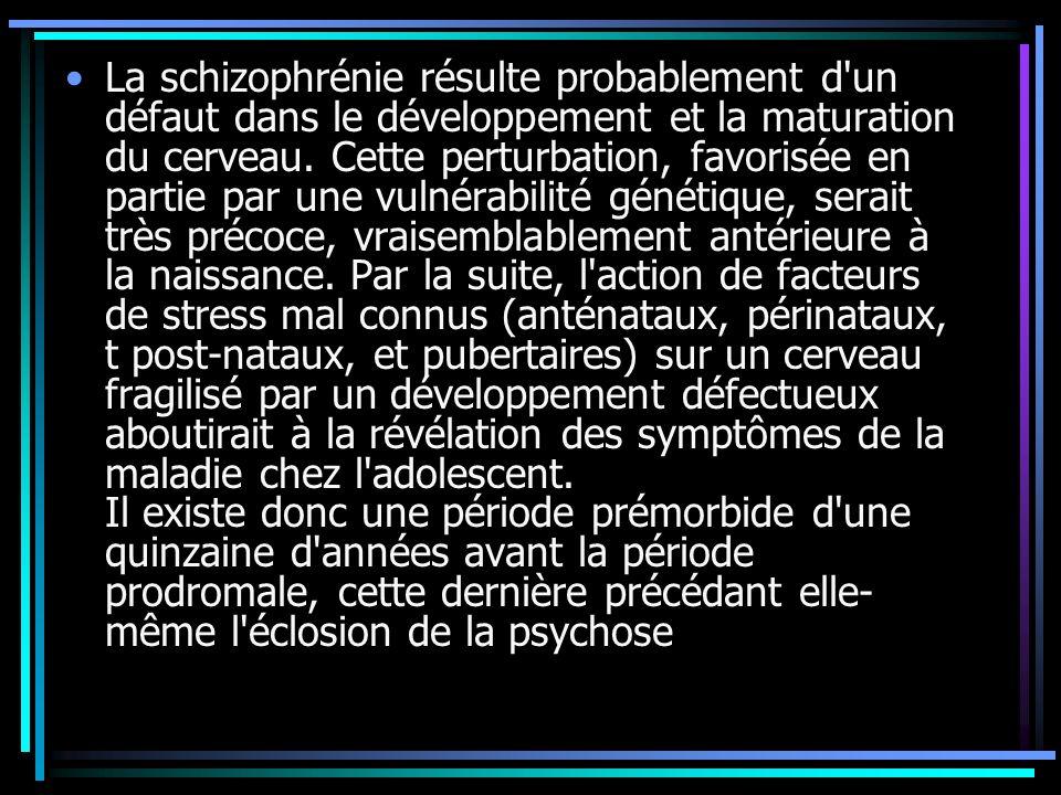 La schizophrénie résulte probablement d'un défaut dans le développement et la maturation du cerveau. Cette perturbation, favorisée en partie par une v