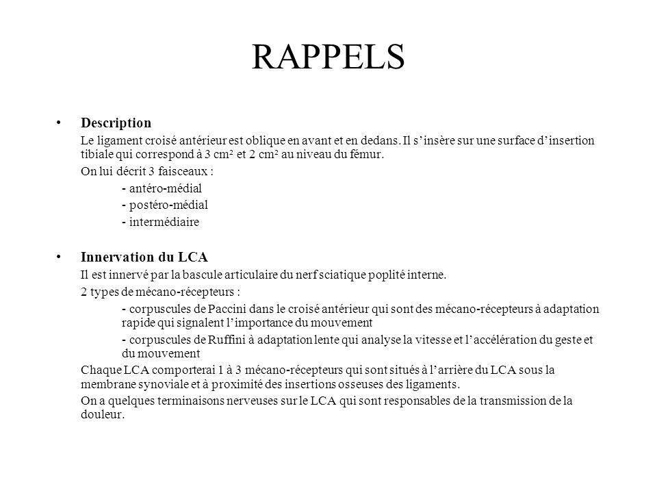RAPPELS Description Le ligament croisé antérieur est oblique en avant et en dedans. Il sinsère sur une surface dinsertion tibiale qui correspond à 3 c