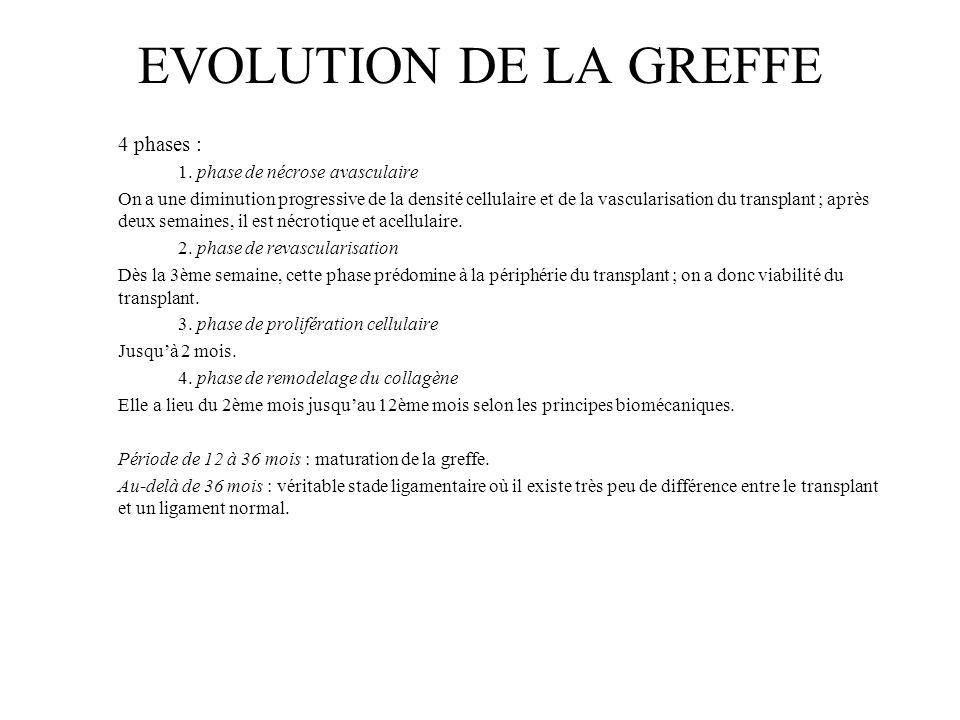 EVOLUTION DE LA GREFFE 4 phases : 1. phase de nécrose avasculaire On a une diminution progressive de la densité cellulaire et de la vascularisation du