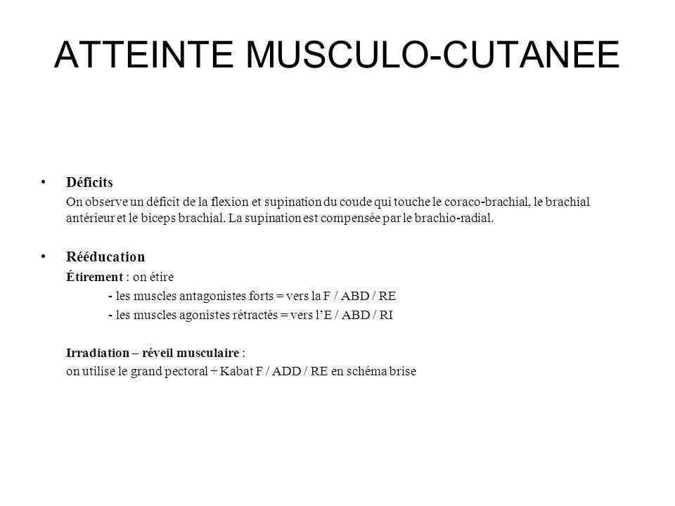 ATTEINTE MUSCULO-CUTANEE Déficits On observe un déficit de la flexion et supination du coude qui touche le coraco-brachial, le brachial antérieur et l