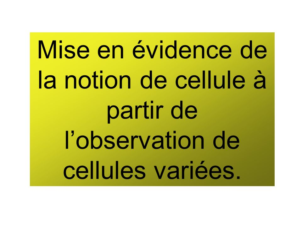 Mise en évidence de la notion de cellule à partir de lobservation de cellules variées.