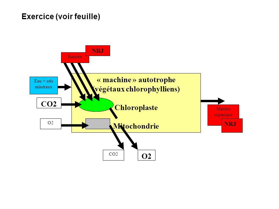 « machine » autotrophe (végétaux chlorophylliens) Chloroplaste Mitochondrie CO2 O2 CO2 Eau + sels minéraux lumière NRJ Matière organique NRJ O2 Exerci