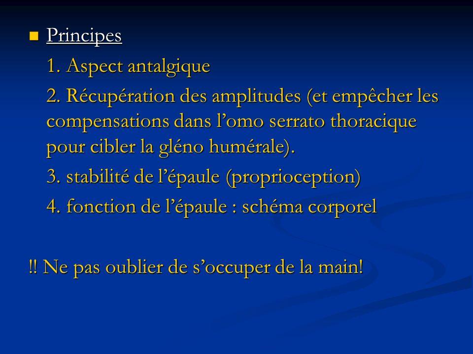 Principes Principes 1. Aspect antalgique 2. Récupération des amplitudes (et empêcher les compensations dans lomo serrato thoracique pour cibler la glé