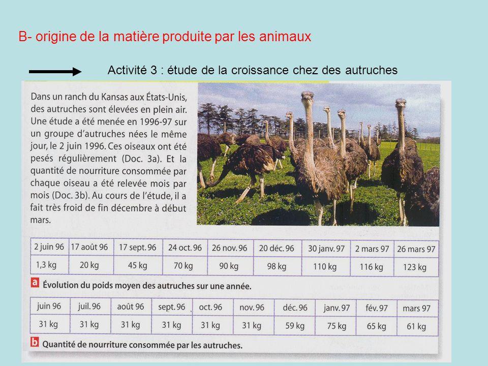 B- origine de la matière produite par les animaux Activité 3 : étude de la croissance chez des autruches