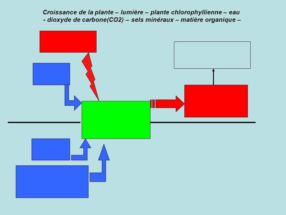 Exercice : compléter le schéma ci-dessous avec les mots ou groupes de mots proposés afin de montrer les besoins des végétaux chlorophylliens lors de l