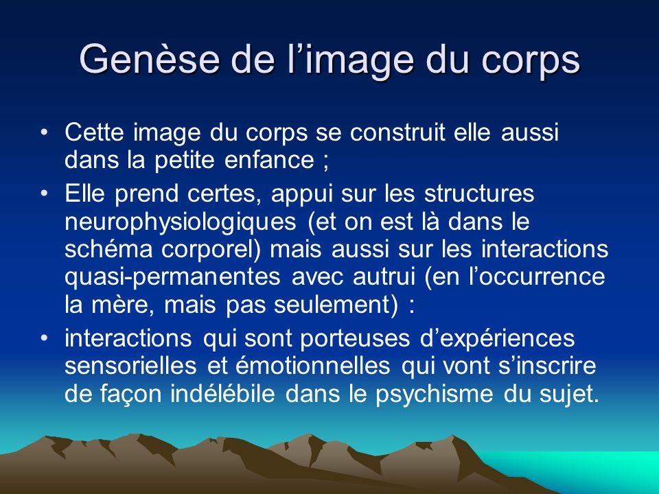 Genèse de limage du corps Cette image du corps se construit elle aussi dans la petite enfance ; Elle prend certes, appui sur les structures neurophysi