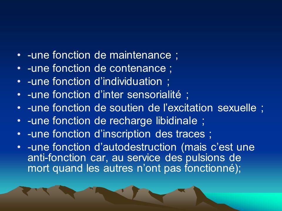 -une fonction de maintenance ; -une fonction de contenance ; -une fonction dindividuation ; -une fonction dinter sensorialité ; -une fonction de souti
