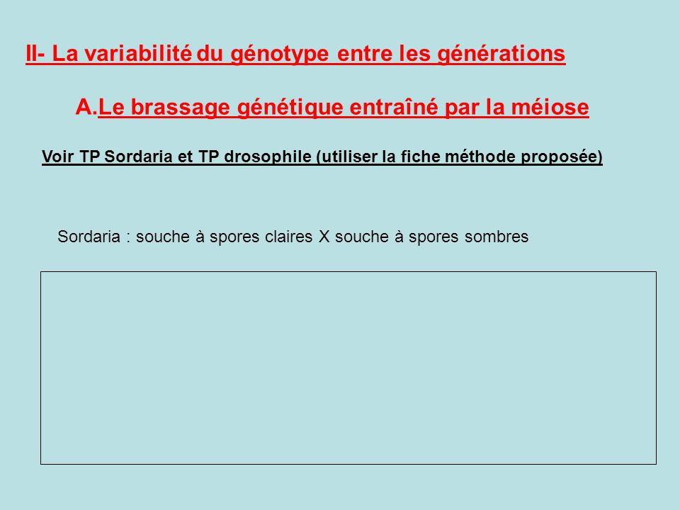 II- La variabilité du génotype entre les générations A.Le brassage génétique entraîné par la méiose Voir TP Sordaria et TP drosophile (utiliser la fic