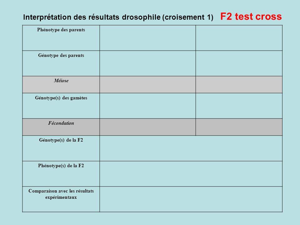 Phénotype des parents Génotype des parents Méiose Génotype(s) des gamètes Fécondation Génotype(s) de la F2 Phénotype(s) de la F2 Comparaison avec les