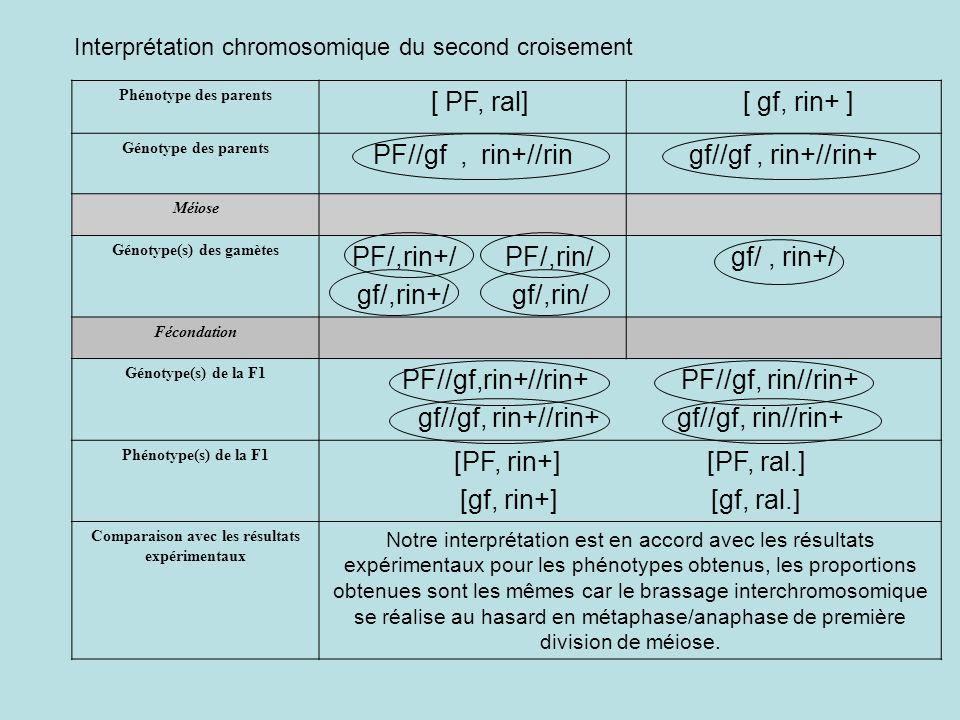 Phénotype des parents [ PF, ral] [ gf, rin+ ] Génotype des parents PF//gf, rin+//ringf//gf, rin+//rin+ Méiose Génotype(s) des gamètes PF/,rin+/ PF/,ri