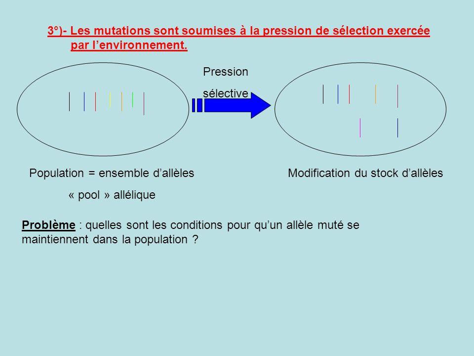 3°)- Les mutations sont soumises à la pression de sélection exercée par lenvironnement. Population = ensemble dallèles « pool » allélique Modification