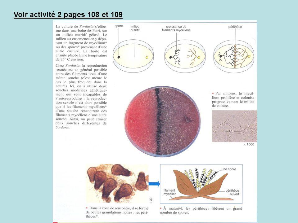 B- Le caractère aléatoire de la fécondation Voir document sur système CMH + couleur de la peau Conclusion sur variabilité entraînée par méiose/fécondation III- Les causes de la variabilité du génotype (polymorphisme) au sein dune espèce A- Variabilité liée à la reproduction sexuée.