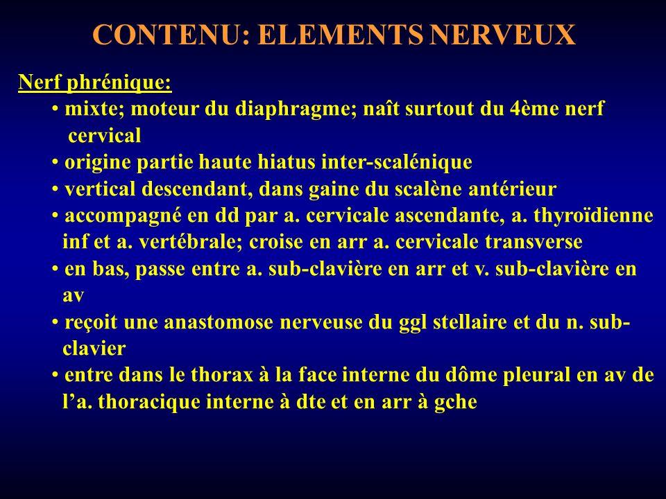 CONTENU: ELEMENTS NERVEUX Nerf phrénique: mixte; moteur du diaphragme; naît surtout du 4ème nerf cervical origine partie haute hiatus inter-scalénique vertical descendant, dans gaine du scalène antérieur accompagné en dd par a.