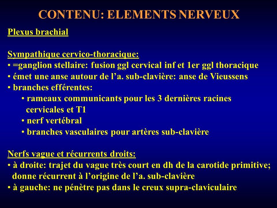 CONTENU: ELEMENTS NERVEUX Plexus brachial Sympathique cervico-thoracique: =ganglion stellaire: fusion ggl cervical inf et 1er ggl thoracique émet une anse autour de la.