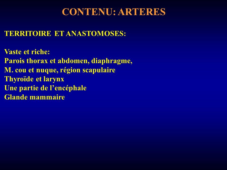 CONTENU: ARTERES TERRITOIRE ET ANASTOMOSES: Vaste et riche: Parois thorax et abdomen, diaphragme, M.