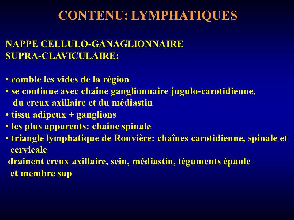 CONTENU: LYMPHATIQUES NAPPE CELLULO-GANAGLIONNAIRE SUPRA-CLAVICULAIRE: comble les vides de la région se continue avec chaîne ganglionnaire jugulo-carotidienne, du creux axillaire et du médiastin tissu adipeux + ganglions les plus apparents: chaîne spinale triangle lymphatique de Rouvière: chaînes carotidienne, spinale et cervicale drainent creux axillaire, sein, médiastin, téguments épaule et membre sup