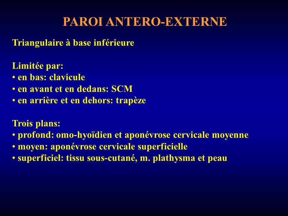 PAROI ANTERO-EXTERNE M.
