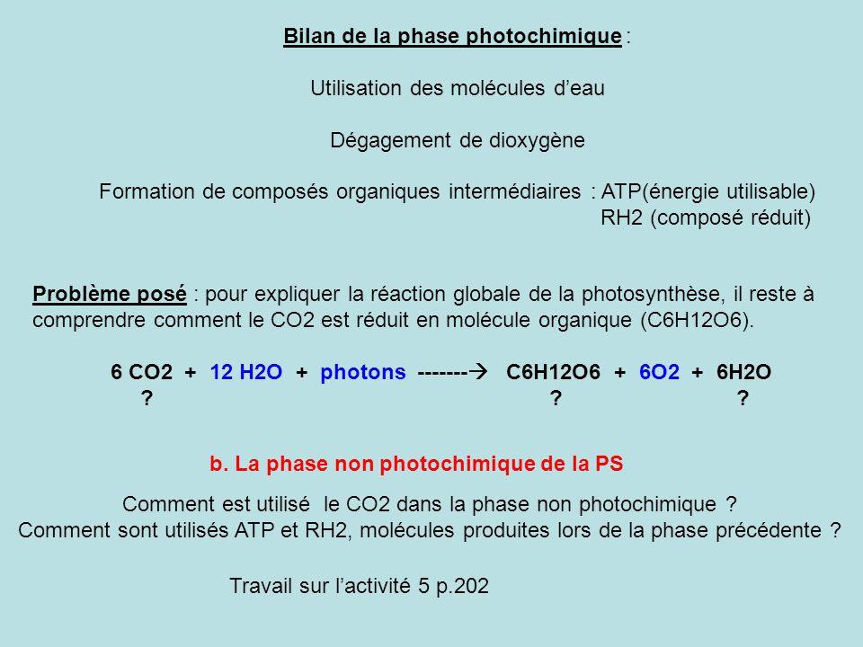 Bilan de la phase photochimique : Utilisation des molécules deau Dégagement de dioxygène Formation de composés organiques intermédiaires : ATP(énergie