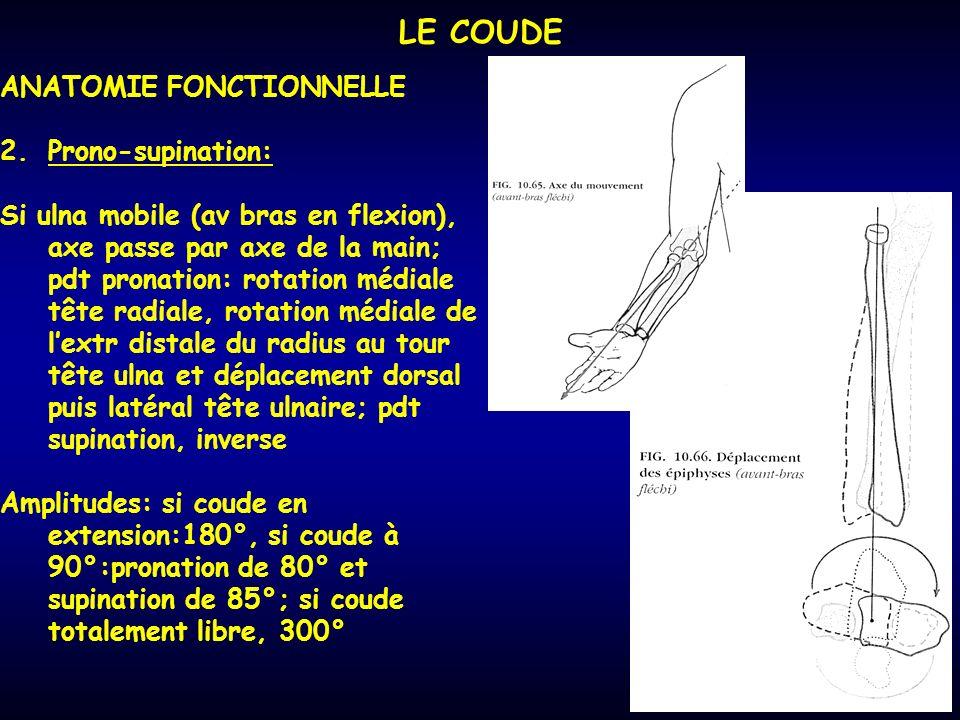 LE COUDE ANATOMIE FONCTIONNELLE 2.Prono-supination: Si ulna mobile (av bras en flexion), axe passe par axe de la main; pdt pronation: rotation médiale