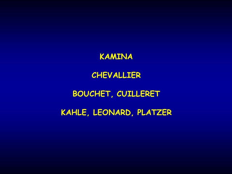 KAMINA CHEVALLIER BOUCHET, CUILLERET KAHLE, LEONARD, PLATZER
