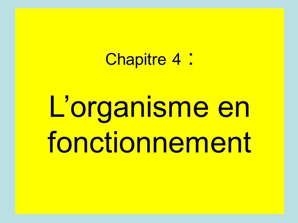 Chapitre 4 : Lorganisme en fonctionnement