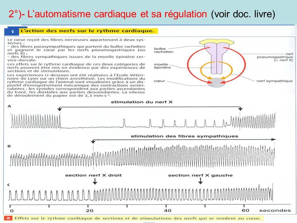 2°)- Lautomatisme cardiaque et sa régulation (voir doc. livre)