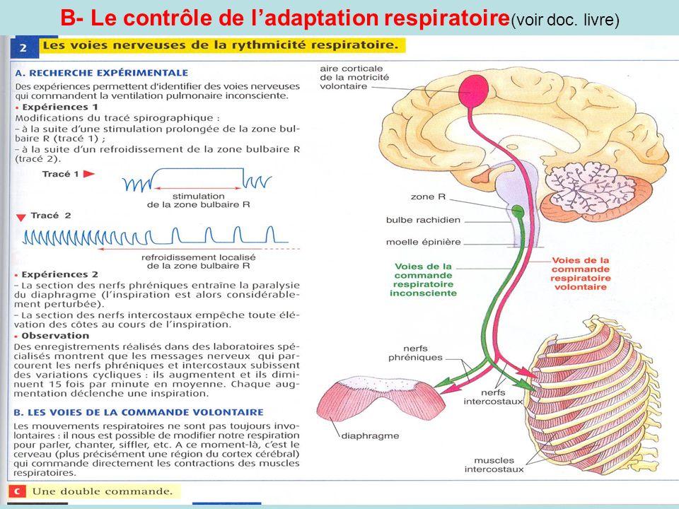 B- Le contrôle de ladaptation respiratoire (voir doc. livre)