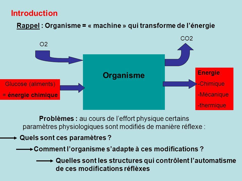 Introduction Rappel : Organisme = « machine » qui transforme de lénergie Problèmes : au cours de leffort physique certains paramètres physiologiques s
