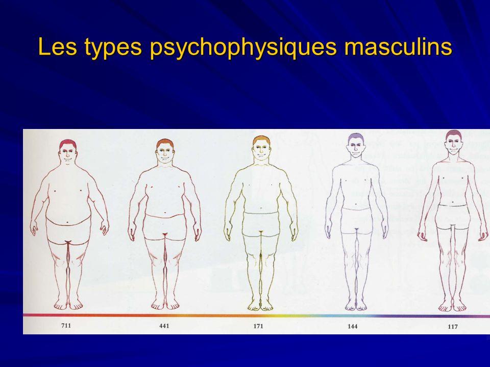 Les types psychophysiques masculins