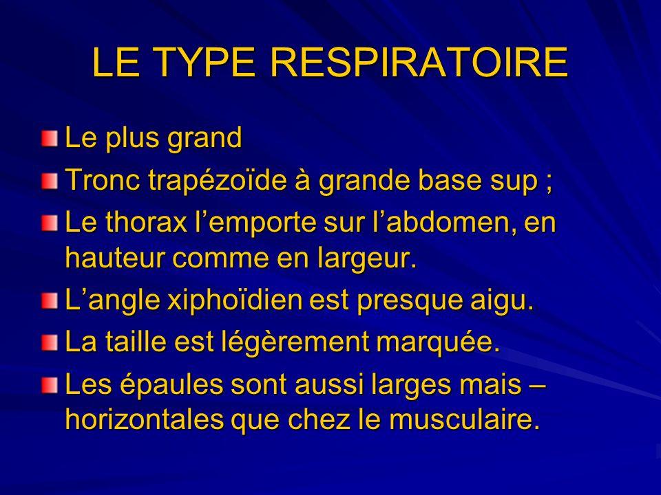 LE TYPE RESPIRATOIRE Le plus grand Tronc trapézoïde à grande base sup ; Le thorax lemporte sur labdomen, en hauteur comme en largeur. Langle xiphoïdie