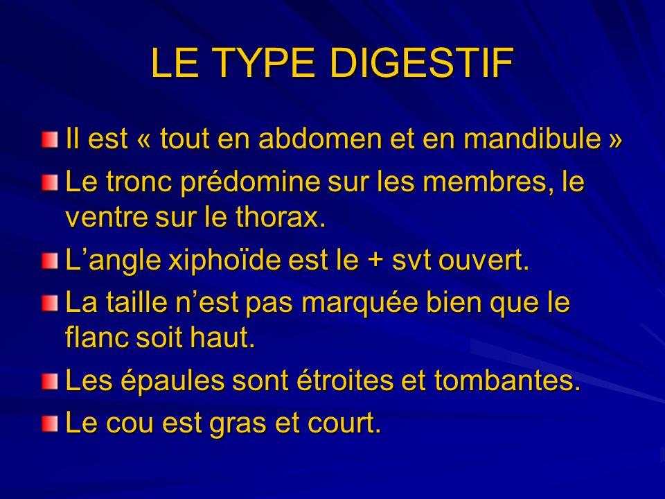 LE TYPE DIGESTIF Il est « tout en abdomen et en mandibule » Le tronc prédomine sur les membres, le ventre sur le thorax. Langle xiphoïde est le + svt