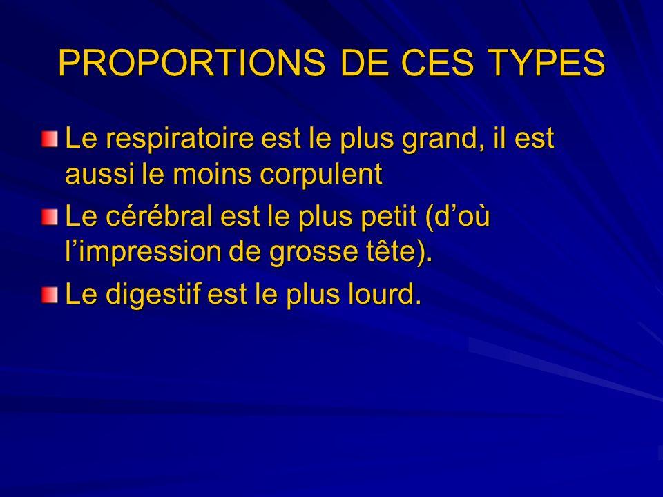 PROPORTIONS DE CES TYPES Le respiratoire est le plus grand, il est aussi le moins corpulent Le cérébral est le plus petit (doù limpression de grosse t