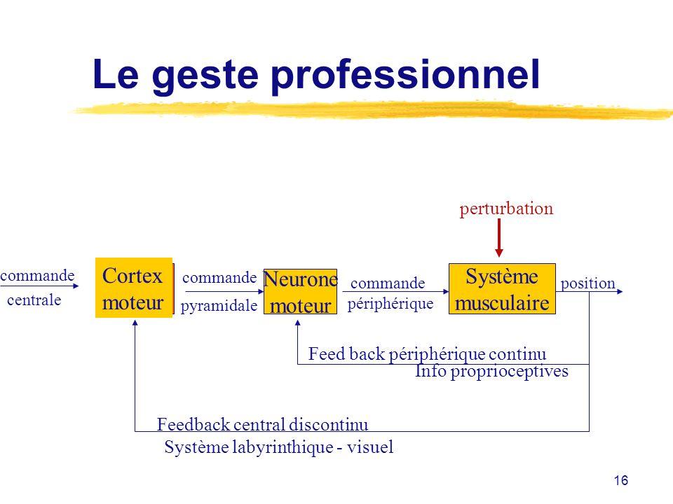 16 Le geste professionnel Cortex moteur commande centrale commande pyramidale Neurone moteur Système musculaire Feedback central discontinu Système la