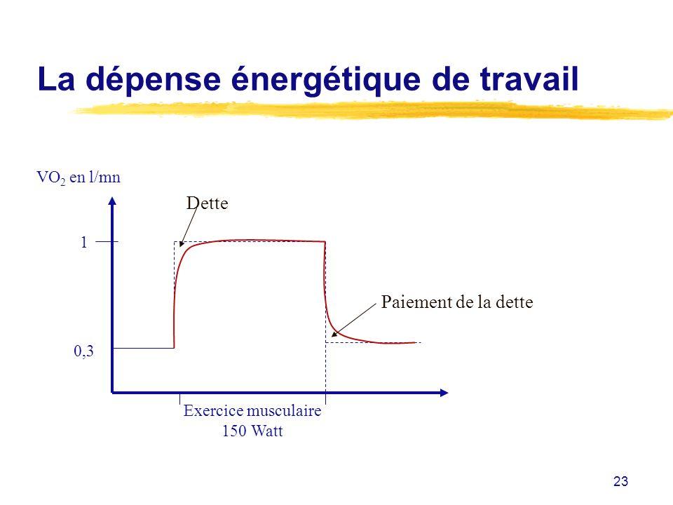 23 La dépense énergétique de travail VO 2 en l/mn 1 0,3 Exercice musculaire 150 Watt Dette Paiement de la dette
