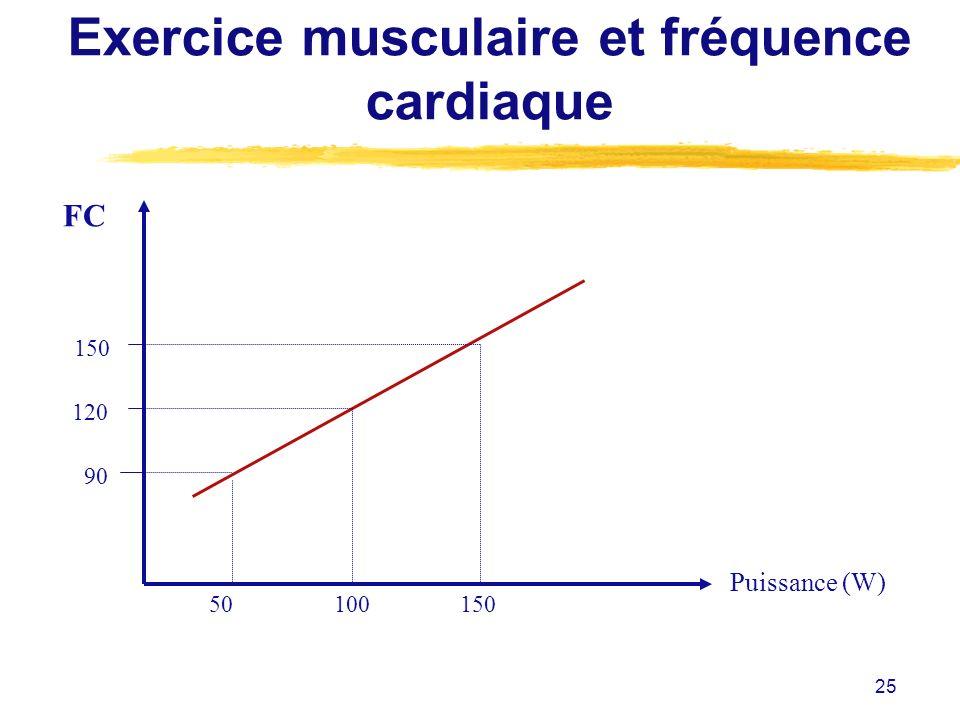 25 FC Puissance (W) Exercice musculaire et fréquence cardiaque 150 120 90 50100150
