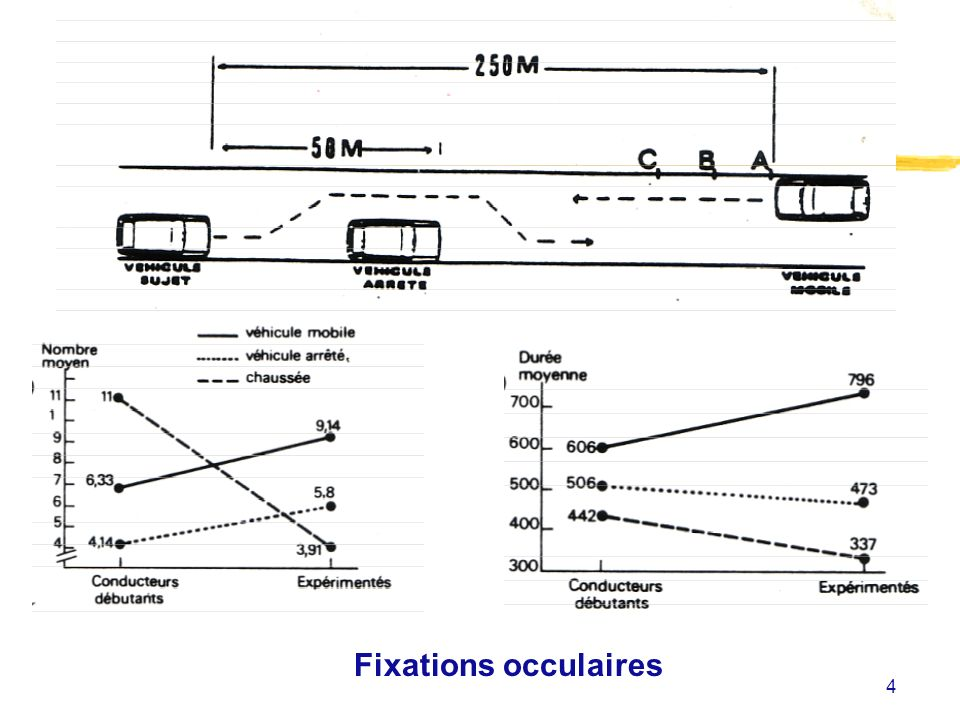 4 Fixations occulaires