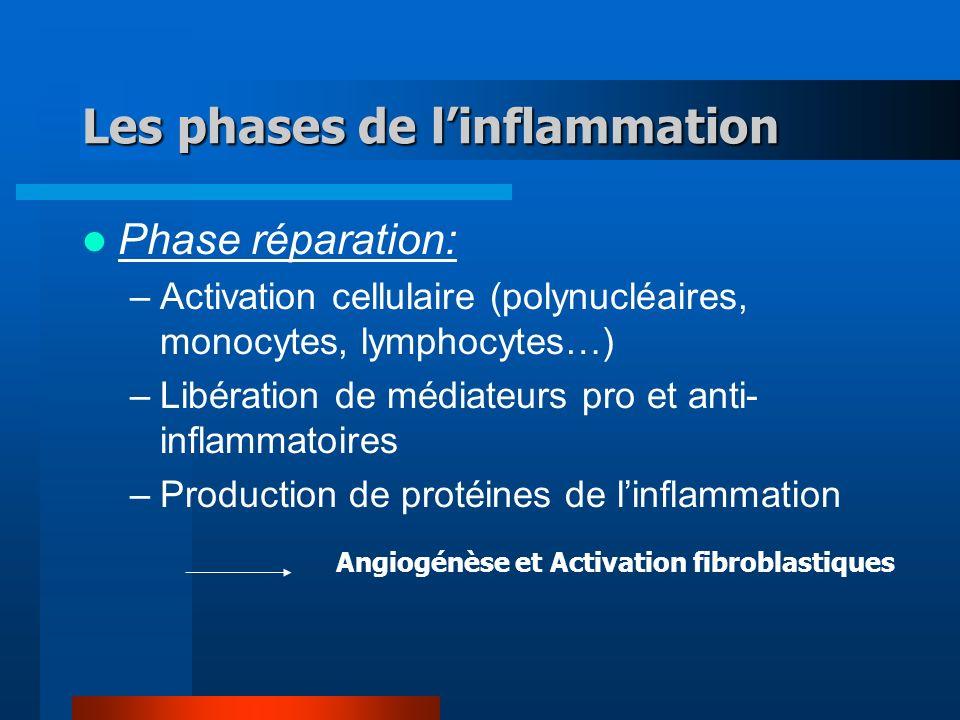 Les phases de linflammation Phase réparation: –Activation cellulaire (polynucléaires, monocytes, lymphocytes…) –Libération de médiateurs pro et anti- inflammatoires –Production de protéines de linflammation Angiogénèse et Activation fibroblastiques