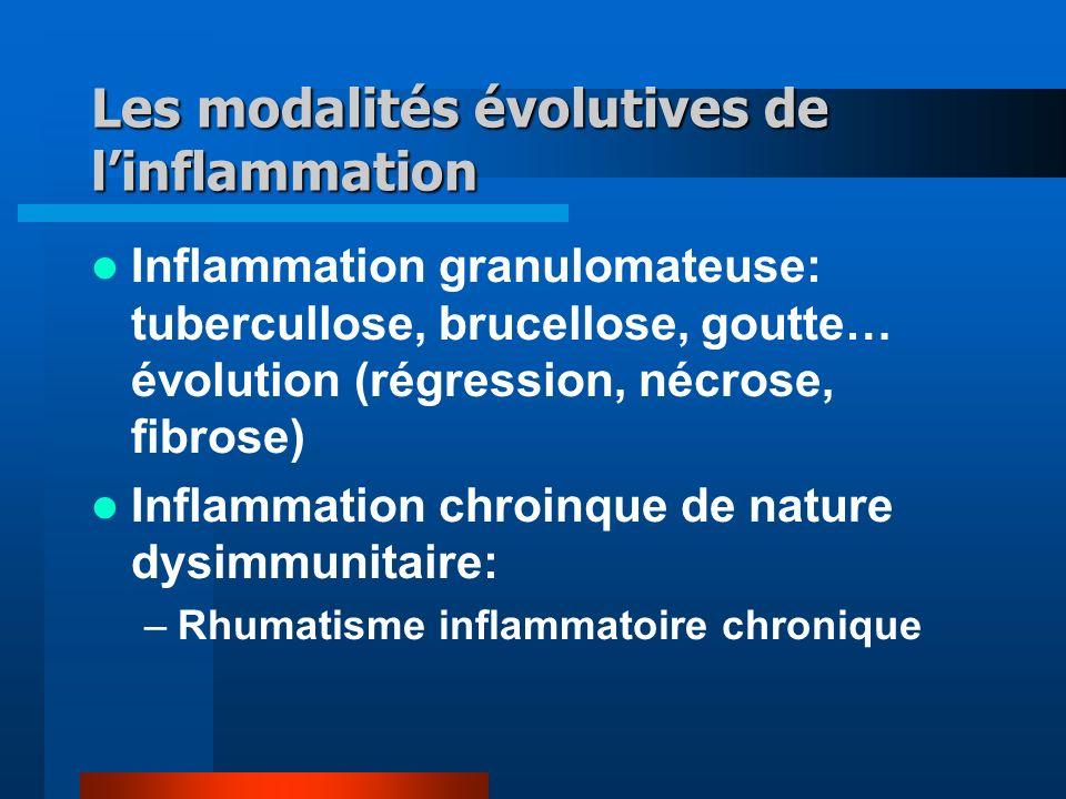Les modalités évolutives de linflammation Inflammation granulomateuse: tubercullose, brucellose, goutte… évolution (régression, nécrose, fibrose) Inflammation chroinque de nature dysimmunitaire: –Rhumatisme inflammatoire chronique
