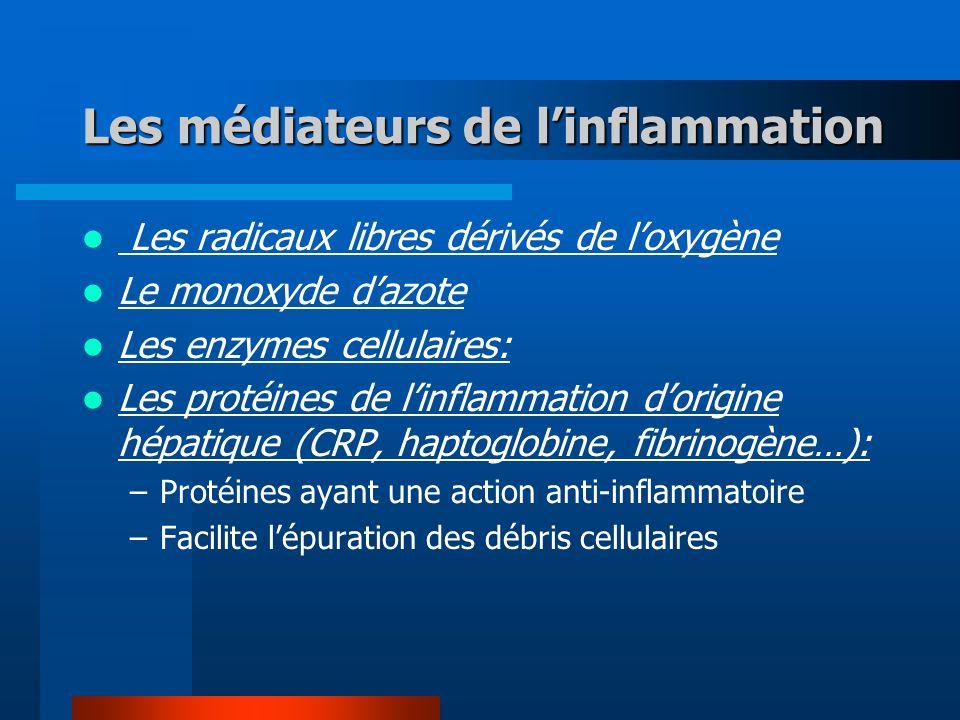 Les médiateurs de linflammation Les radicaux libres dérivés de loxygène Le monoxyde dazote Les enzymes cellulaires: Les protéines de linflammation dorigine hépatique (CRP, haptoglobine, fibrinogène…): –Protéines ayant une action anti-inflammatoire –Facilite lépuration des débris cellulaires