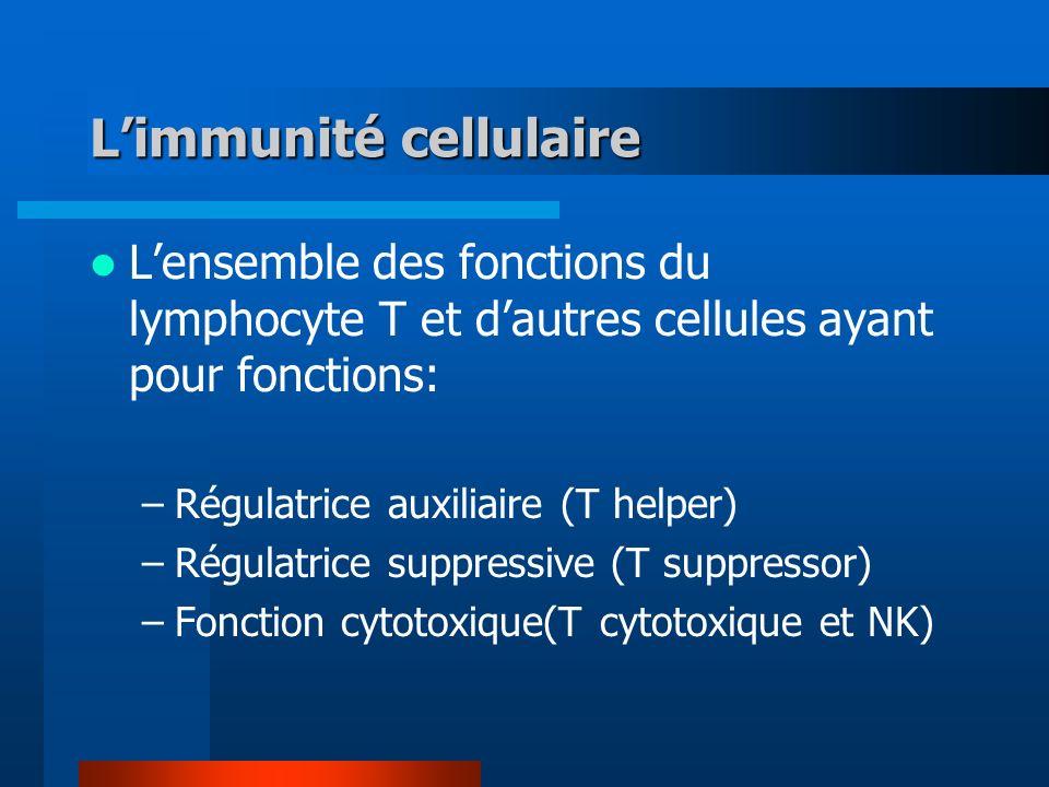 Limmunité cellulaire Lensemble des fonctions du lymphocyte T et dautres cellules ayant pour fonctions: –Régulatrice auxiliaire (T helper) –Régulatrice suppressive (T suppressor) –Fonction cytotoxique(T cytotoxique et NK)