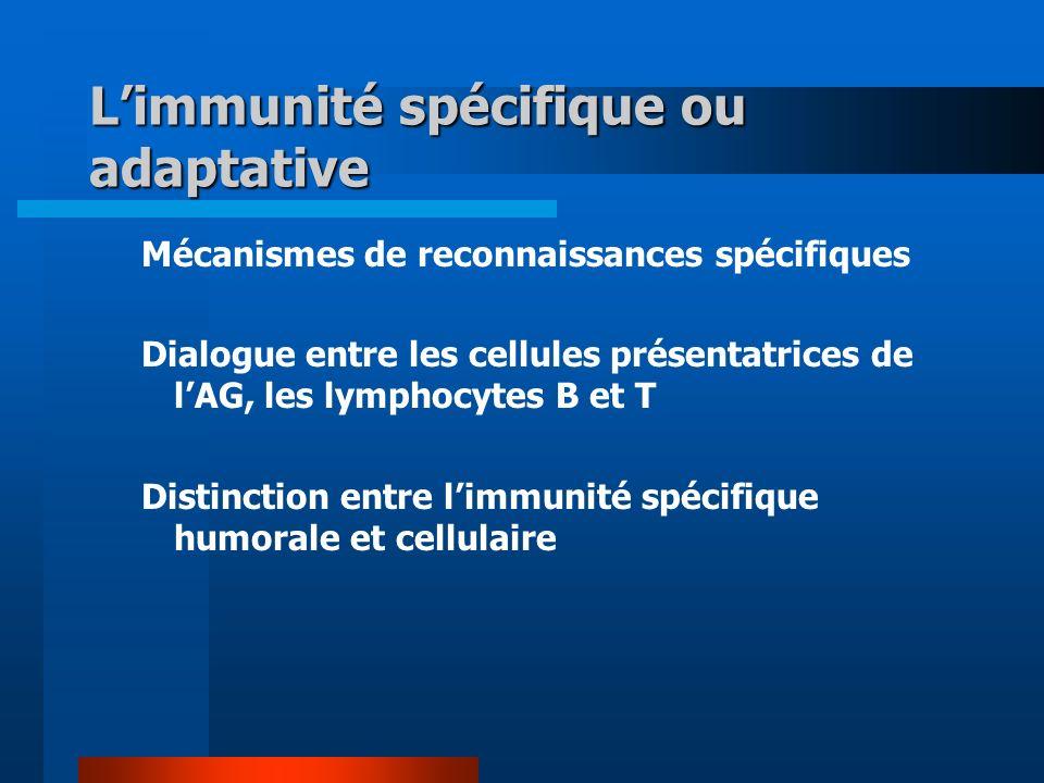 Limmunité spécifique ou adaptative Mécanismes de reconnaissances spécifiques Dialogue entre les cellules présentatrices de lAG, les lymphocytes B et T Distinction entre limmunité spécifique humorale et cellulaire