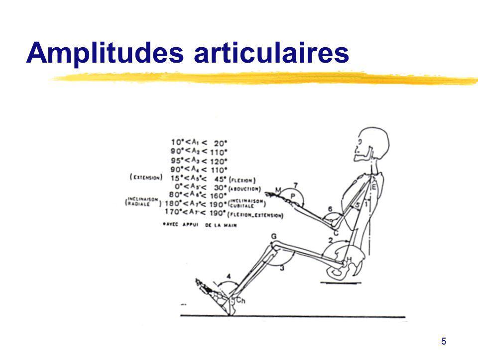 5 Amplitudes articulaires