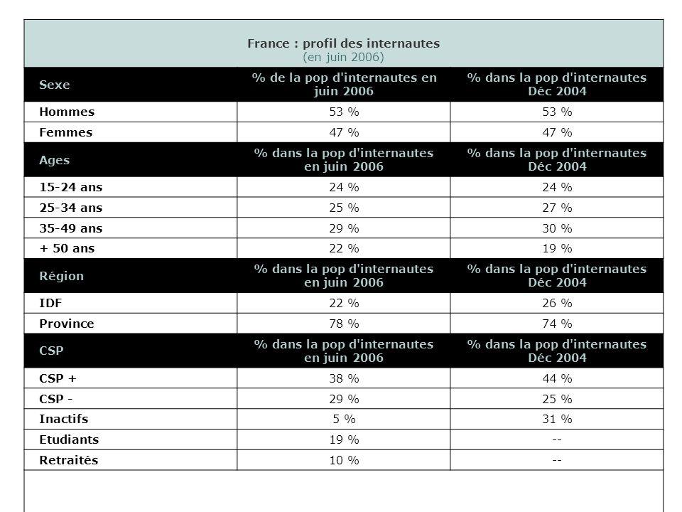 France : profil des internautes (en juin 2006) Sexe % de la pop d internautes en juin 2006 % dans la pop d internautes Déc 2004 Hommes53 % Femmes47 % Ages % dans la pop d internautes en juin 2006 % dans la pop d internautes Déc 2004 15-24 ans24 % 25-34 ans25 %27 % 35-49 ans29 %30 % + 50 ans22 %19 % Région % dans la pop d internautes en juin 2006 % dans la pop d internautes Déc 2004 IDF22 %26 % Province78 %74 % CSP % dans la pop d internautes en juin 2006 % dans la pop d internautes Déc 2004 CSP +38 %44 % CSP -29 %25 % Inactifs5 %31 % Etudiants19 %-- Retraités10 %--