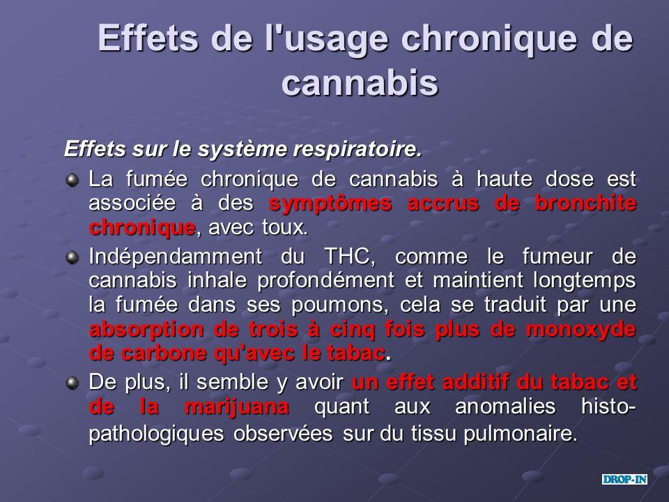 Effets de l'usage chronique de cannabis Effets de l'usage chronique de cannabis Effets sur le système respiratoire. Effets sur le système respiratoire