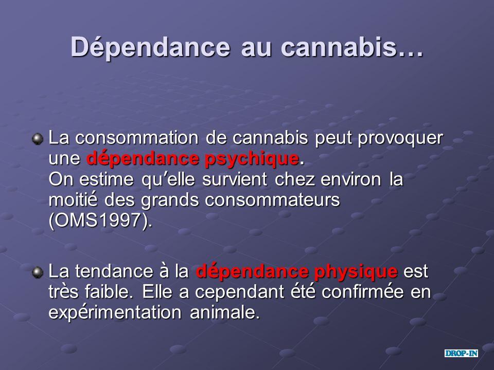 Dépendance au cannabis… La consommation de cannabis peut provoquer une d é pendance psychique. On estime qu elle survient chez environ la moiti é des
