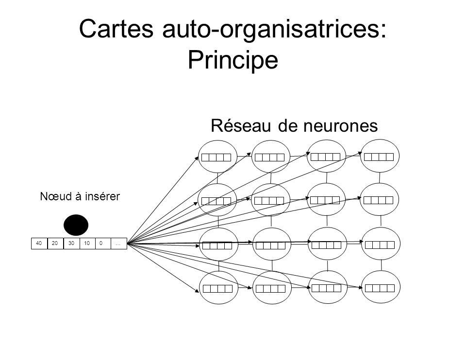 Cartes auto-organisatrices: Principe Réseau de neurones Nœud à insérer 402030100…