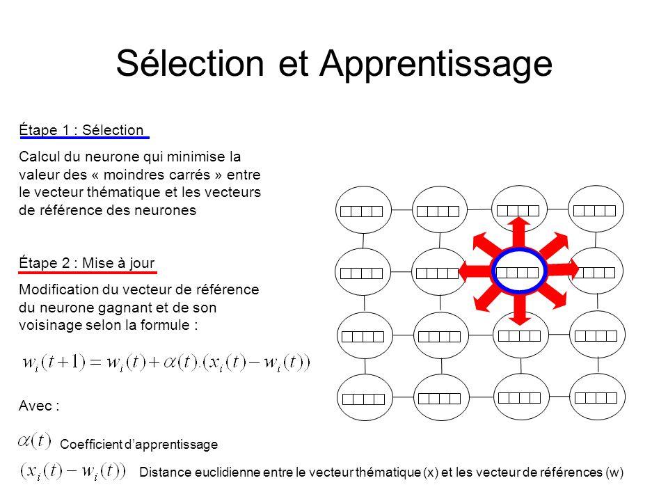 Sélection et Apprentissage Étape 1 : Sélection Calcul du neurone qui minimise la valeur des « moindres carrés » entre le vecteur thématique et les vecteurs de référence des neurones Étape 2 : Mise à jour Modification du vecteur de référence du neurone gagnant et de son voisinage selon la formule : Avec : Coefficient dapprentissage Distance euclidienne entre le vecteur thématique (x) et les vecteur de références (w)