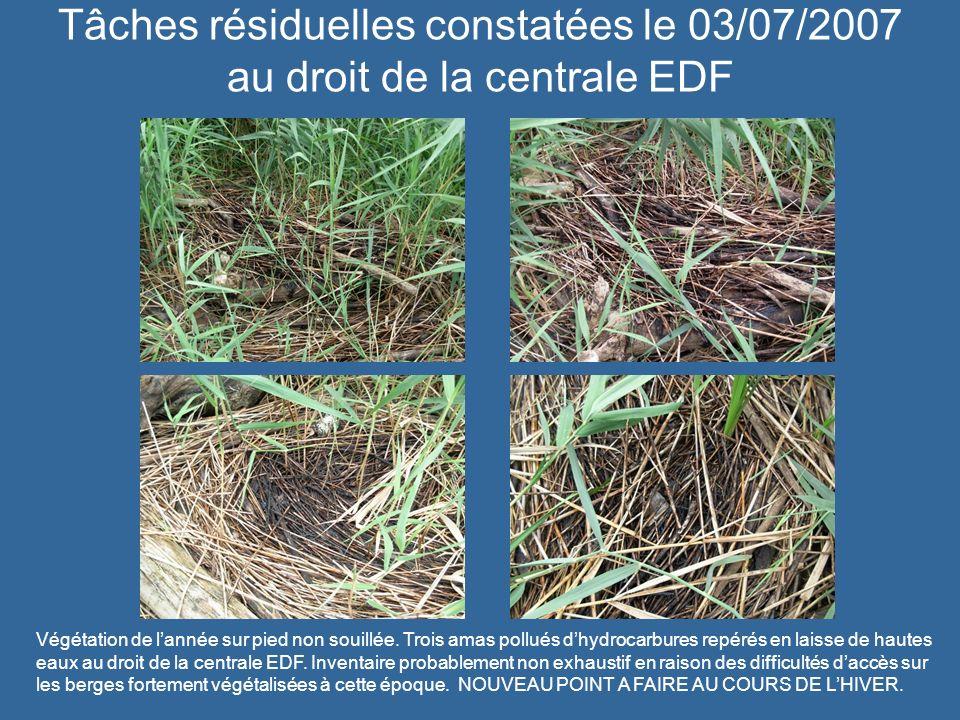 Tâches résiduelles constatées le 03/07/2007 au droit de la centrale EDF Végétation de lannée sur pied non souillée. Trois amas pollués dhydrocarbures
